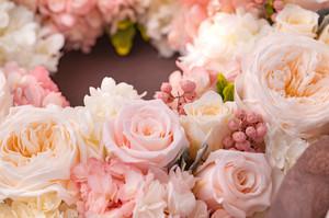flower420146_TP_V.jpg