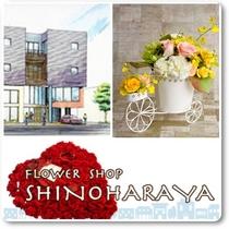 ◆有限会社花の店しのはらや [鹿児島市谷山中央]